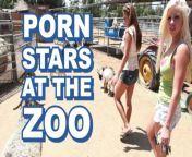BANGBROS - Sexy Pornstars Invade Famous Zoo & Fuck Zookeeper from zoo sex wmen